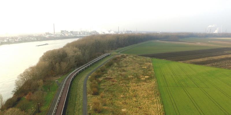 Eine Variante beim Projekt Rheinspange 553 ist eine Rheinquerung als Brücke durch das RetentionsbeckenLangeler Bogen